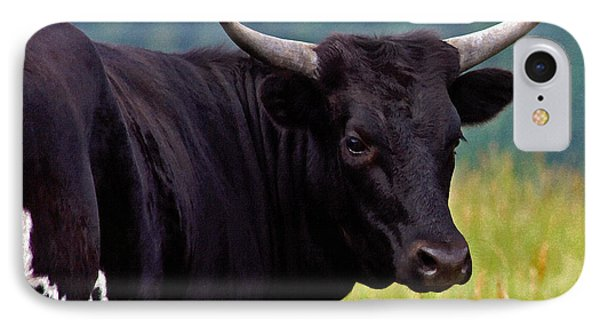 IPhone Case featuring the painting Wild Type Colored Heifer Longhorn Cow by Karon Melillo DeVega