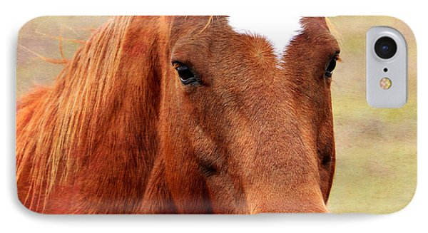 Wildfire - Equine Portrait IPhone Case by Deena Stoddard