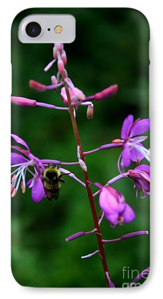 IPhone Case featuring the photograph Wildflower Bee by Amanda Holmes Tzafrir