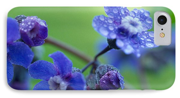 Wildflower In The Rain Phone Case by Kathy Yates