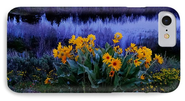 Wildflower Reflection Phone Case by Dan Sproul