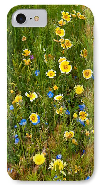 Wildflower Salad - Spring In Central California IPhone Case by Ram Vasudev