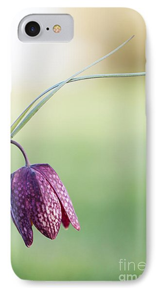 Wildflower Snakes Head Fritillary Phone Case by Tim Gainey