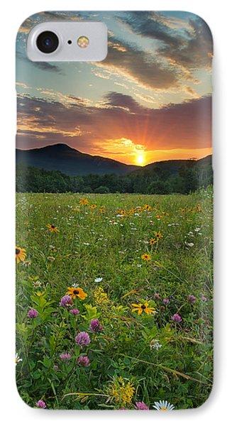 Wildflower Sunset IPhone Case by Darylann Leonard Photography