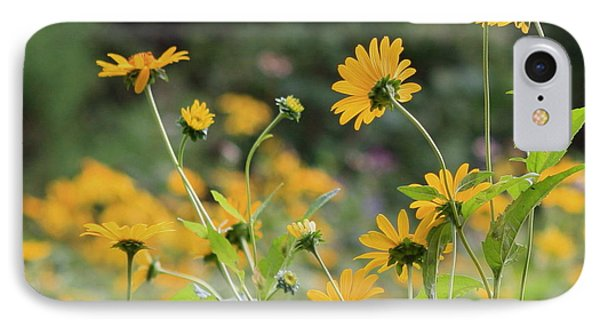 Wildflowers 2013 IPhone Case by Fred  Sheridan