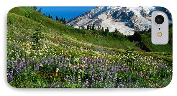 Wildflowers Blooming In Front Of Snowy IPhone Case