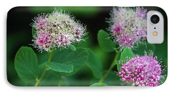 IPhone Case featuring the photograph Wildflowers by Bob Noble Photography