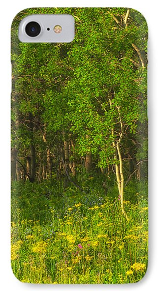 IPhone Case featuring the photograph Wildflowers Glacier National Park Montana by Ram Vasudev