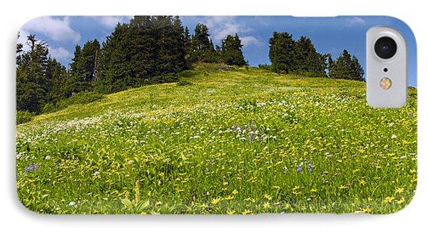 Wildflowers In North Cascades - Washington IPhone Case