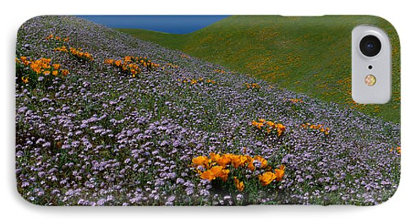Wildflowers On A Hillside, California IPhone Case by Panoramic Images