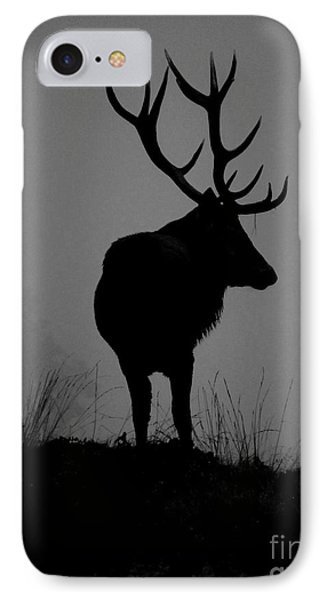 Wildlife Monarch Of The Park IPhone Case by Linsey Williams