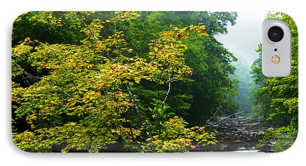 Williams River Summer Fall Color IPhone Case by Thomas R Fletcher