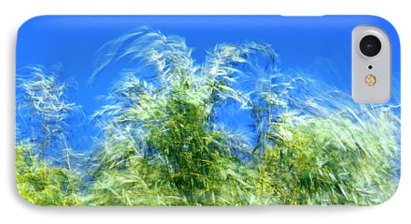 Willow Tree Foliage In The Wind IPhone Case