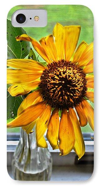 Wilting Sunflower In Window IPhone Case