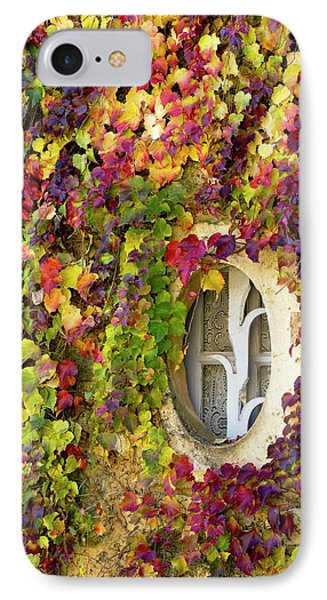 Window Covered In Virginia Creeper IPhone Case by Bob Gibbons