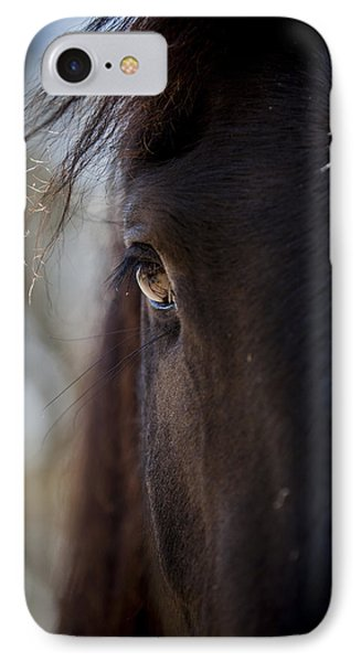 Window Into The Gentle Giant's Soul IPhone Case by Amber Kresge