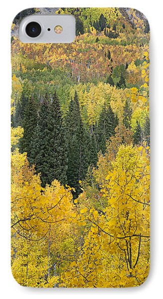 Window To Autumn Splendor IPhone Case by Morris  McClung