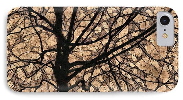 Windowpane Tree In Autumn Phone Case by Carol Leigh