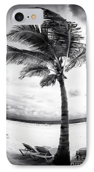 Windy Palm Phone Case by John Rizzuto