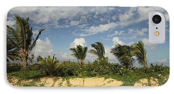 Windy Palms IPhone Case by Mustafa Abdullah