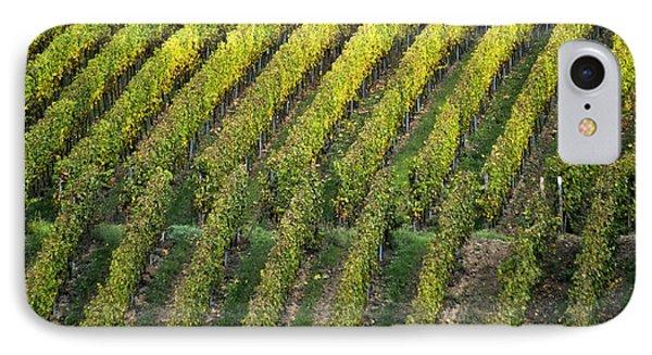 Wine Acreage In Germany Phone Case by Heiko Koehrer-Wagner