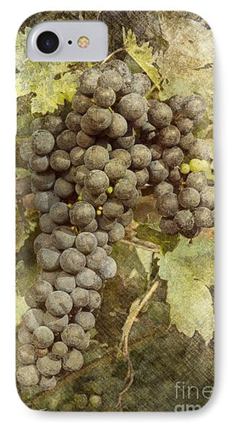 Winery Grapes IPhone Case by Carrie Cranwill