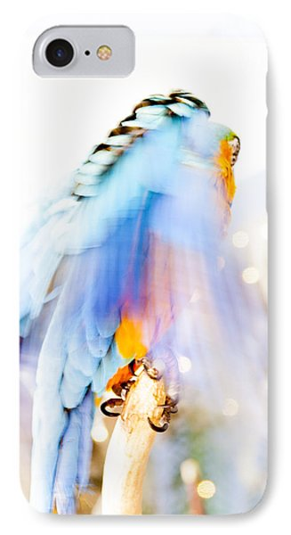 Wing Dream IPhone Case by Fran Riley