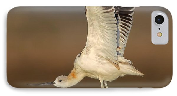 Wing Stretch IPhone Case by Daniel Behm