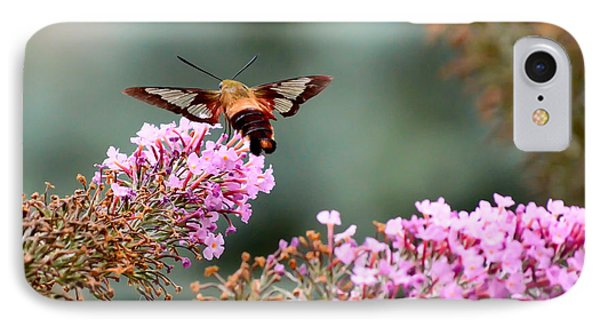 IPhone Case featuring the photograph Wings In The Flowers by Kerri Farley