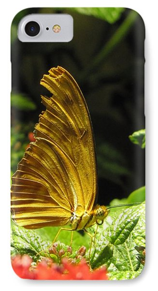 Wings Of Gold IPhone Case by Jennifer Wheatley Wolf