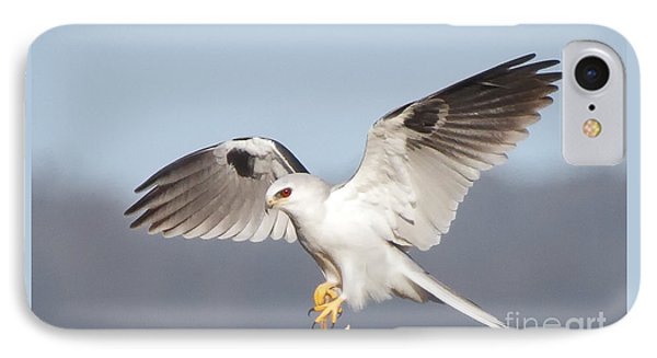 Wingspan IPhone Case by Alice Cahill