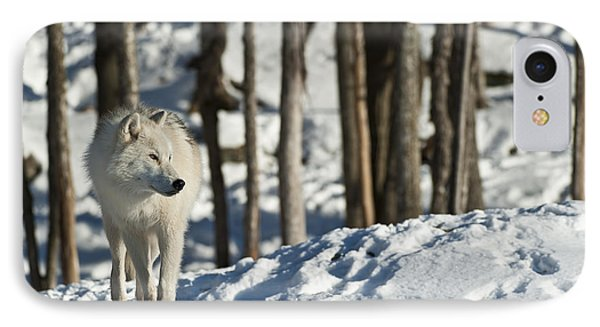 IPhone Case featuring the photograph Winter Arctic Wolf by Wolves Only