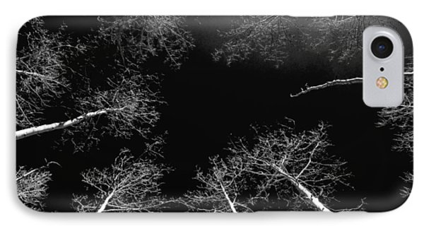 IPhone Case featuring the photograph Winter Aspen  by Eric Rundle