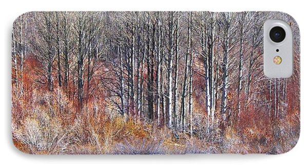 Winter Aspen IPhone Case by Marilyn Diaz