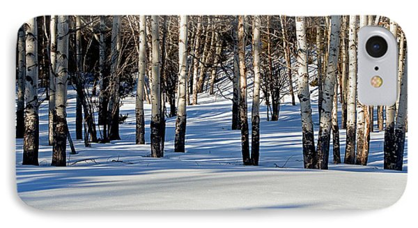 IPhone Case featuring the photograph Winter Aspens by Jack Bell