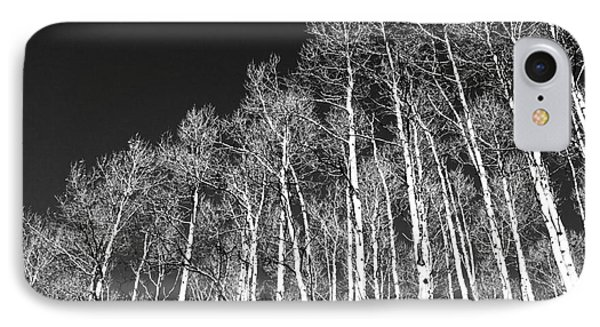 IPhone Case featuring the photograph Winter Aspens by Roselynne Broussard