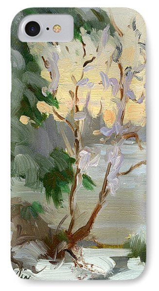 Winter At Martha Lake IPhone Case by Diane McClary
