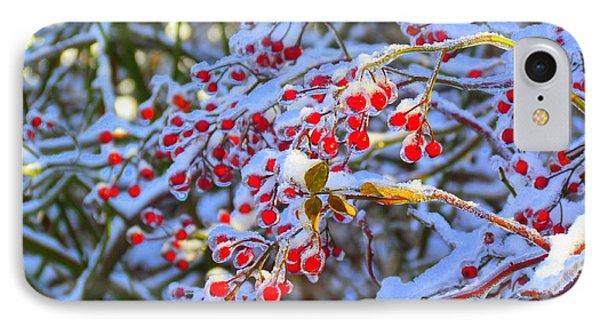 Winter Berries IPhone Case by Elizabeth Dow