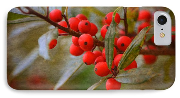 IPhone Case featuring the photograph Winter Berries by Linda Segerson
