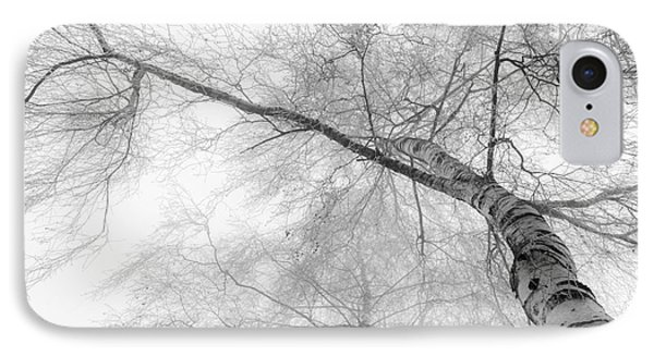 Winter Birch - Bw Phone Case by Hannes Cmarits