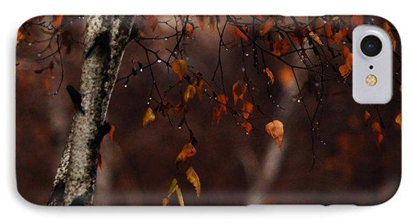 Winter Birch Phone Case by Linda Shafer