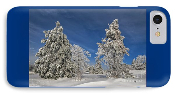 Winter Blues IPhone Case by Lois Bryan