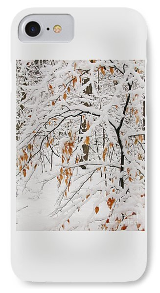 IPhone Case featuring the photograph Winter Branches by Ann Horn
