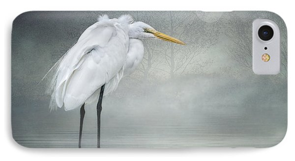 Winter Breeze IPhone Case by Brian Tarr