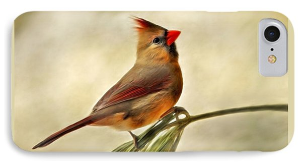 Winter Cardinal Phone Case by Christina Rollo