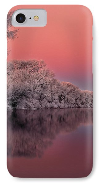Winter Color IPhone Case by Leland D Howard