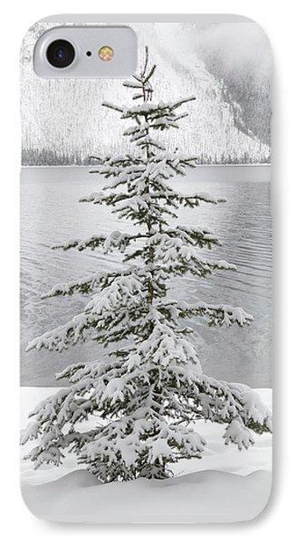 Winter Decor IPhone Case by Diane Bohna