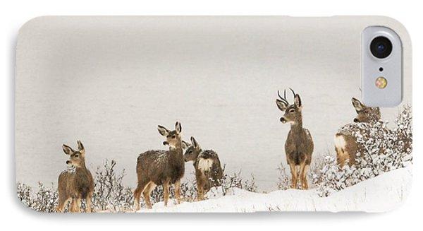 Winter Deer IPhone Case by Brittany Schwartz