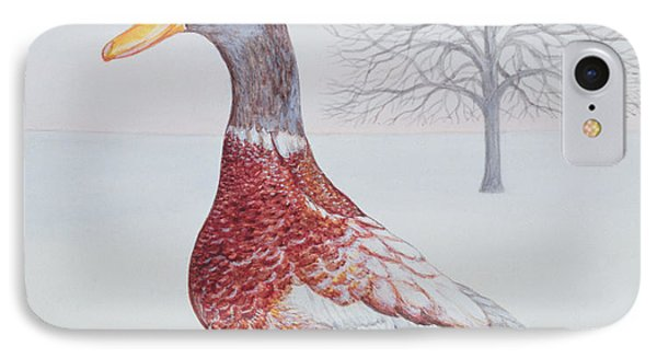 Winter Drake Painting By Ditz