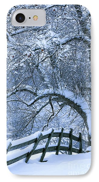 Winter Fence IPhone Case by Alan L Graham